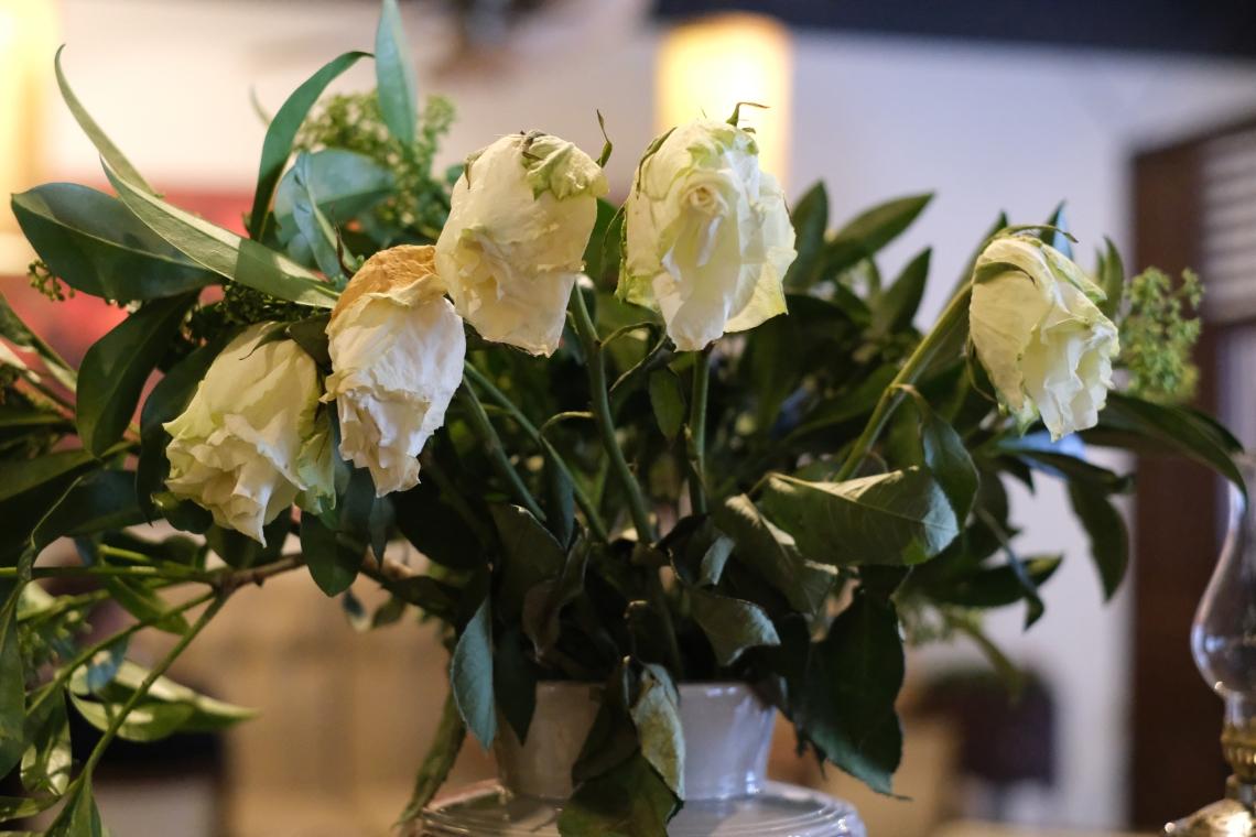 009 Gėlės nuvyto